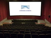 Which cinema screen surface should you use?